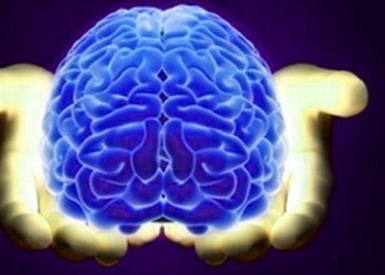 spiritual part of human brain