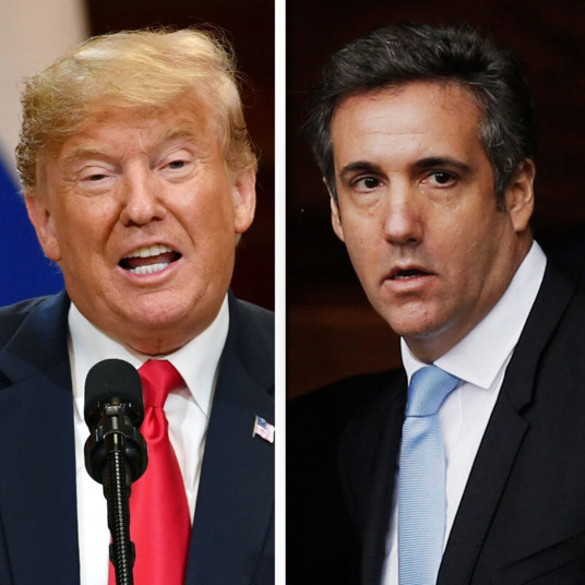 Trump, Cohen admits paying women to hush up Trump affairs