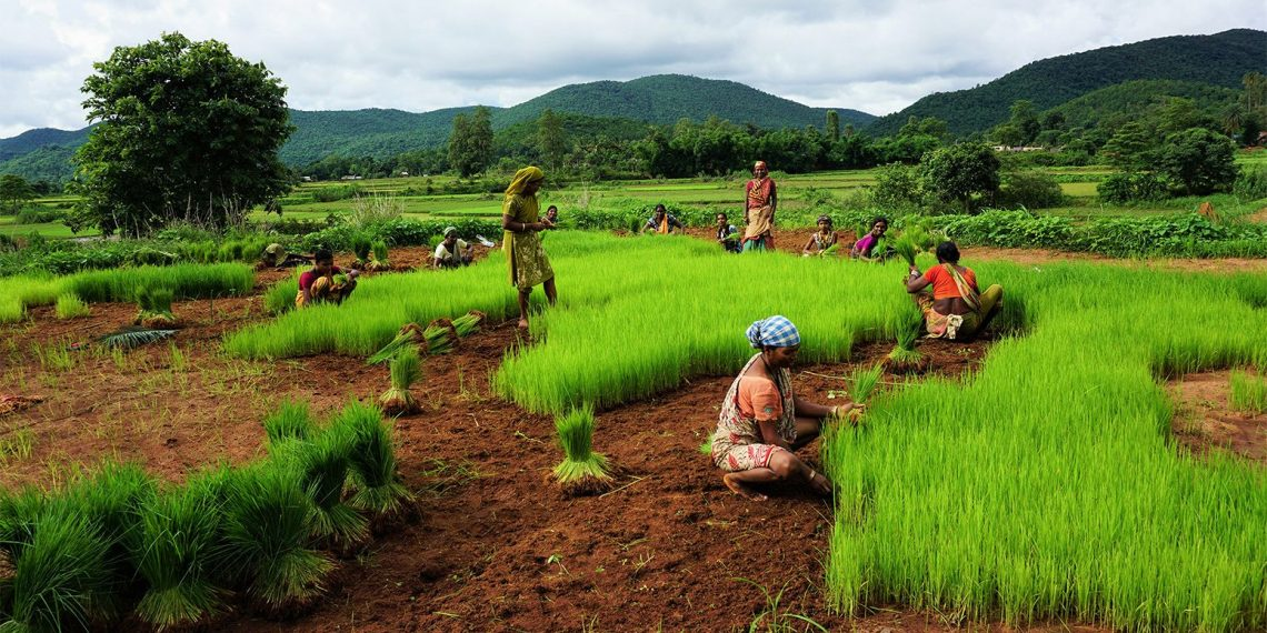 Agriculture, Sector vital to greater well-being