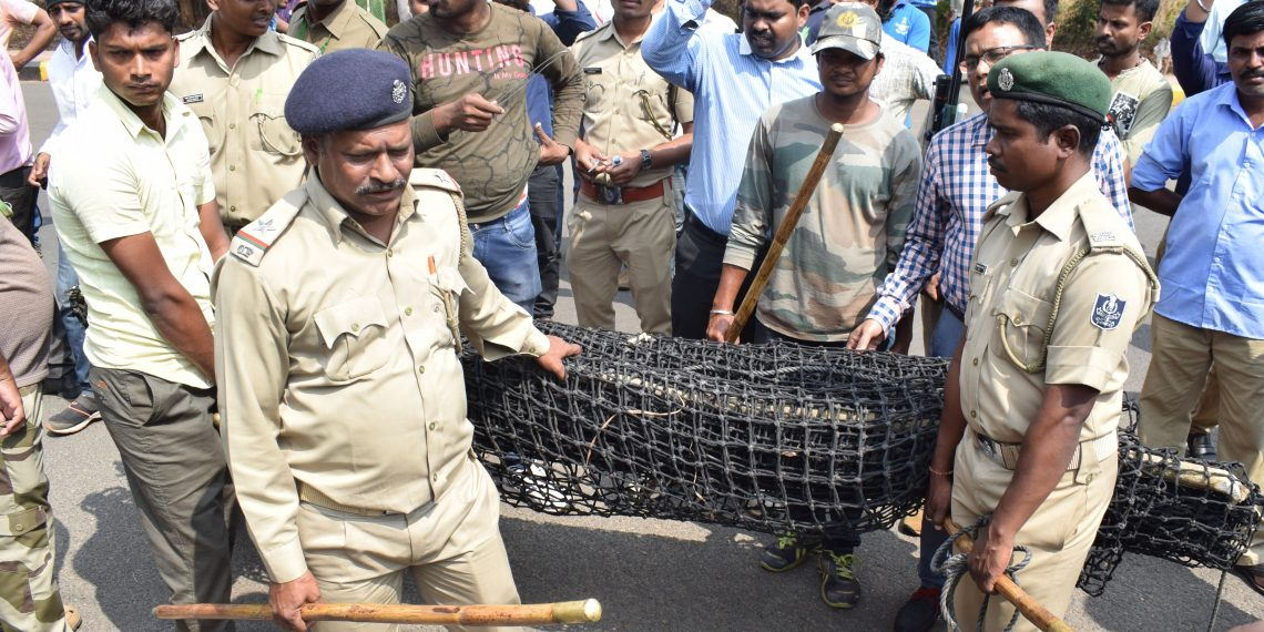 File photo of Forest department officials laying the trap to catch the leopard that recently strayed into the human settlement in Bhubaneswar